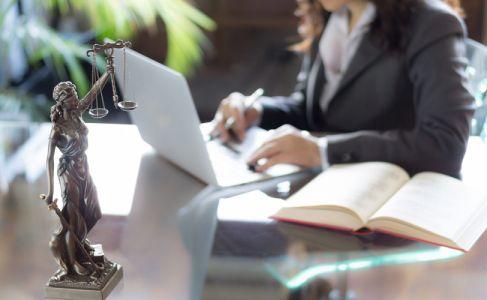 პროფესიული ადაპტაციის პროგრამის გავლის მსურველთათვის რეგისტაცია დაიწყო